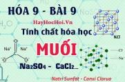 Tính chất hóa học của Muối, phản ứng trao đổi trong dung dịch ví dụ và bài tập - hóa 9 bài 9